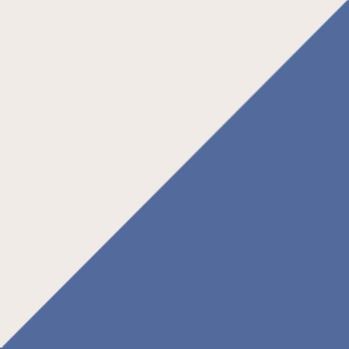 Washington Olympics logo from 1867-