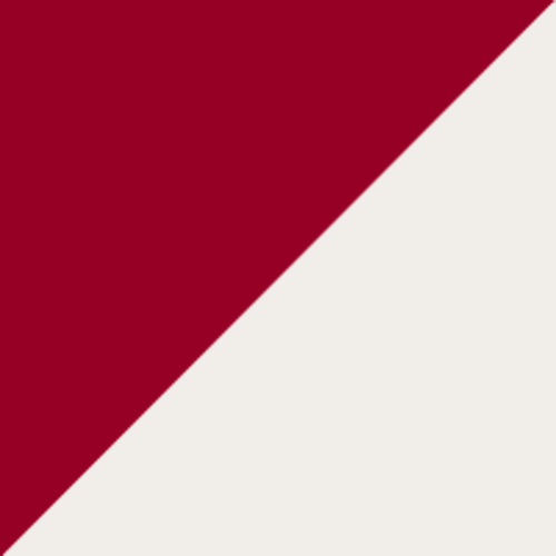 Washington Nationals logo from 1884-