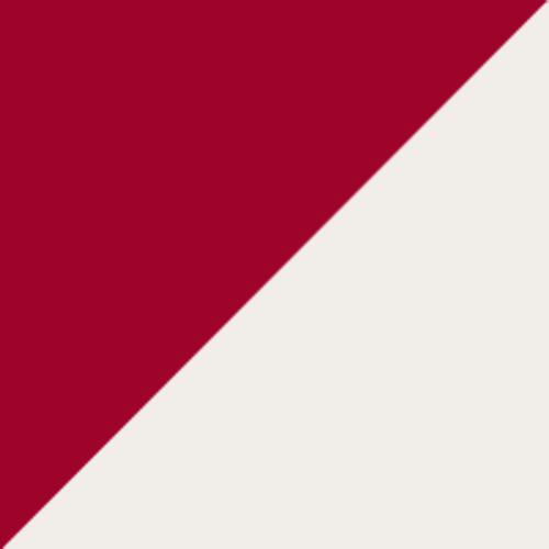 Altoona Mountain Citys logo from 1884-