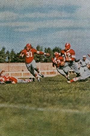 1935 Chicago Cardinals Season