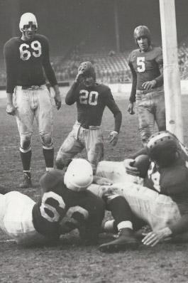 1943 Chicago Cardinals Season