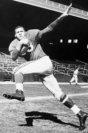 1954 Chicago Cardinals Season