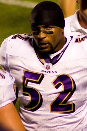 2008 Baltimore Ravens Season