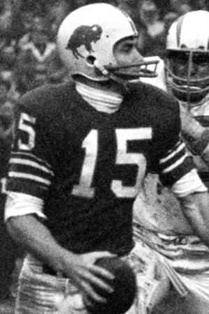 1966 Buffalo Bills Season