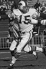 1967 Buffalo Bills Season