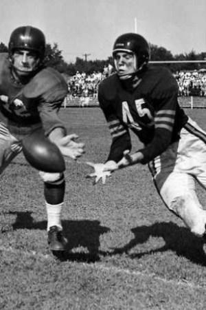 1949 Chicago Bears Season
