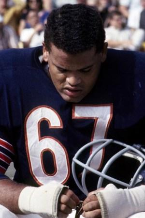 1965 Chicago Bears Season