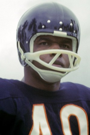 1966 Chicago Bears Season