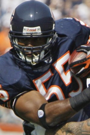 2003 Chicago Bears Season