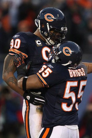 2010 Chicago Bears Season