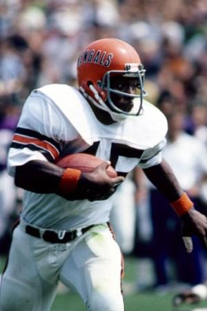 1978 Cincinnati Bengals Season