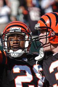 2003 Cincinnati Bengals Season