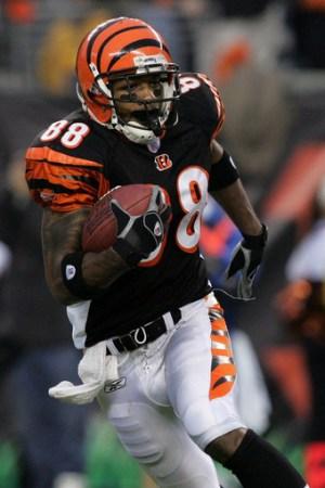 2005 Cincinnati Bengals Season