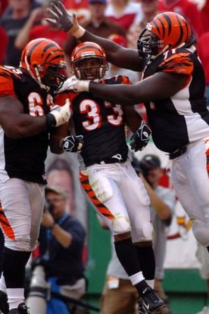 2006 Cincinnati Bengals Season