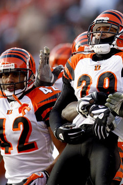 2008 Cincinnati Bengals Season