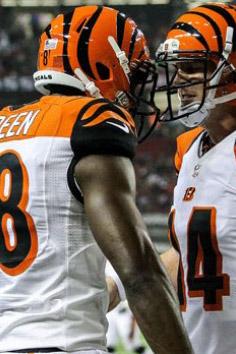 2013 Cincinnati Bengals Season