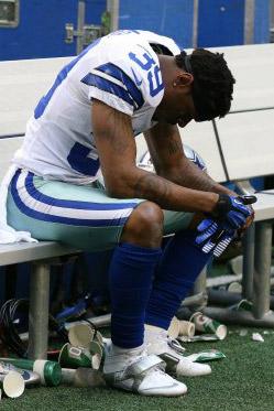 2013 Dallas Cowboys Season