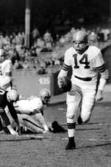 1954 Detroit Lions Season