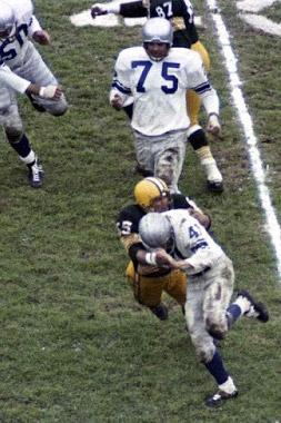 1959 Detroit Lions Season