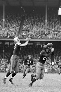 1947 Boston Yanks Season