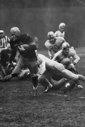1949 New York Bulldogs Season