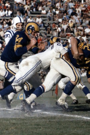 1959 NFL Season