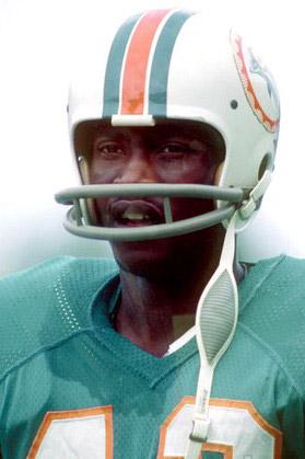 1971 Miami Dolphins Season