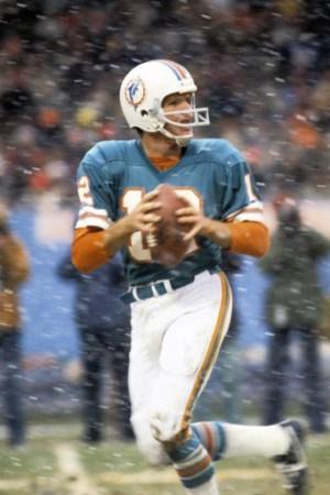 1976 Miami Dolphins Season