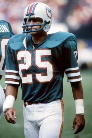 1980 Miami Dolphins Season