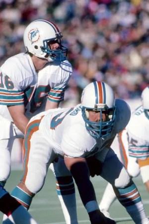 1981 Miami Dolphins Season