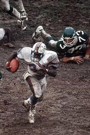 1983 Miami Dolphins Season