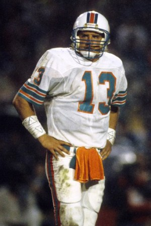 1986 Miami Dolphins Season