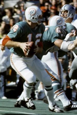 1988 Miami Dolphins Season