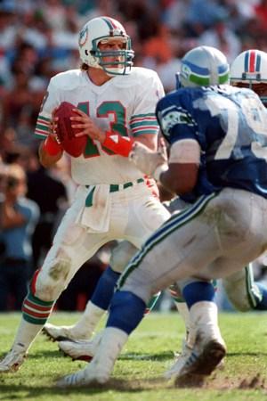 1993 Miami Dolphins Season