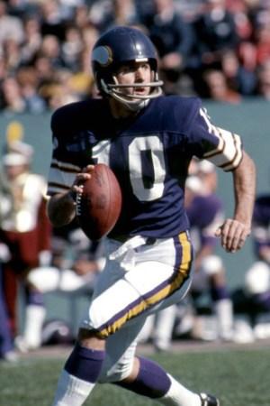 1975 Minnesota Vikings Season