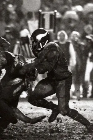 1977 Minnesota Vikings Season
