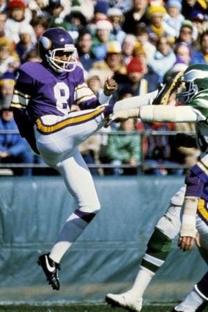 1981 Minnesota Vikings Season