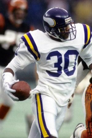 1986 Minnesota Vikings Season
