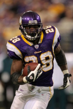 2007 Minnesota Vikings Season