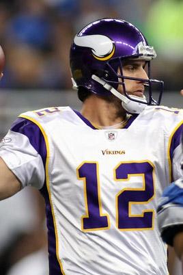 2008 Minnesota Vikings Season