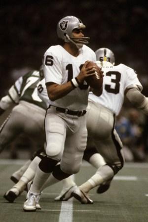 1981 Oakland Raiders Season