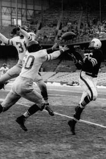 1951 Philadelphia Eagles Season