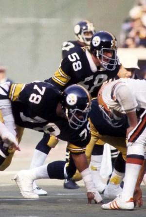 1975 NFL Season