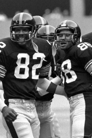 1980 Pittsburgh Steelers Season