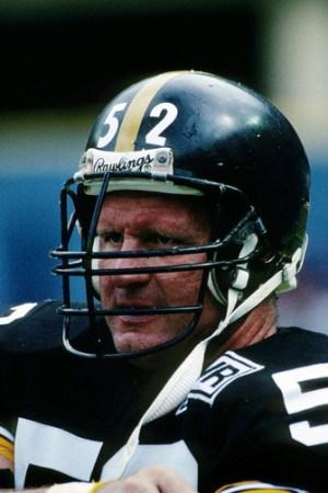 1988 Pittsburgh Steelers Season