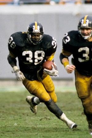 1989 Pittsburgh Steelers Season