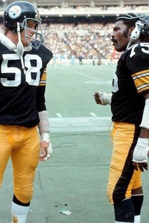 1991 Pittsburgh Steelers Season