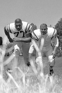 1963 AFL Season