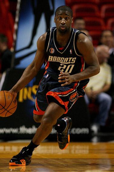 2008 Charlotte Bobcats season