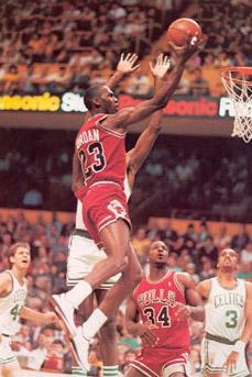 1986 Chicago Bulls Season